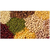 DALS AND PULSES (11)