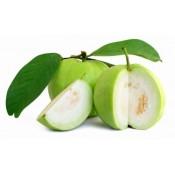 Guava (0)