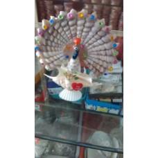 Single Peacock Shell