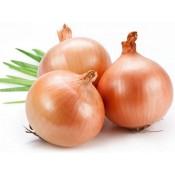 White Onion (0)